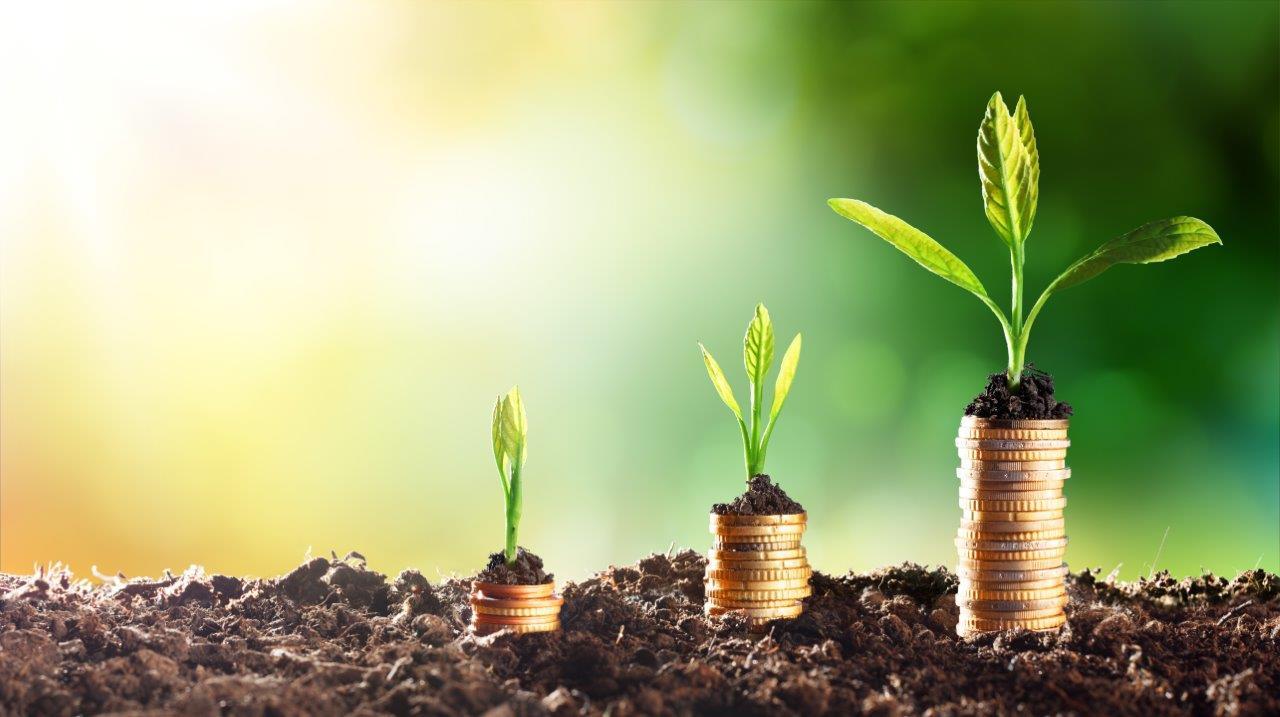 A Brief Guide to Environmental Finance Jobs