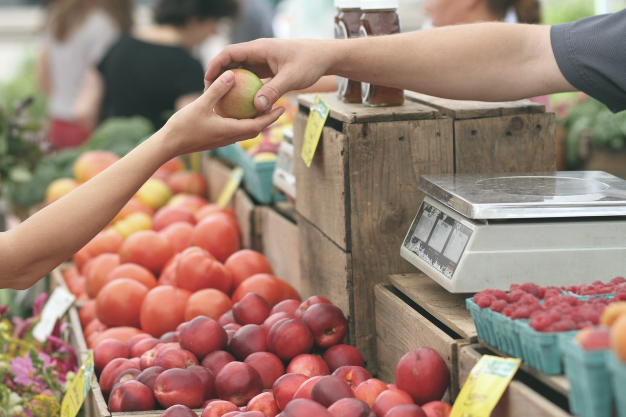 How to Apply for the US Food Stamps Program