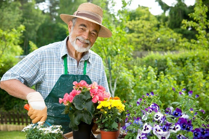 Discover Sites with Jobs for Gardeners